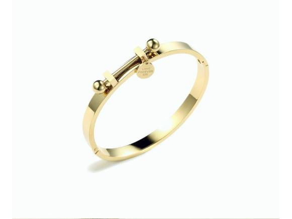Plated 18K Gold Titanium Steel Simple Bracelet for Gril (JSBr2)